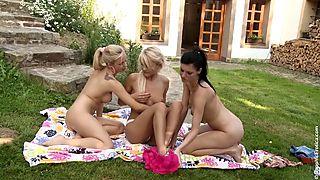 Outdoor Orgy screenshot #12